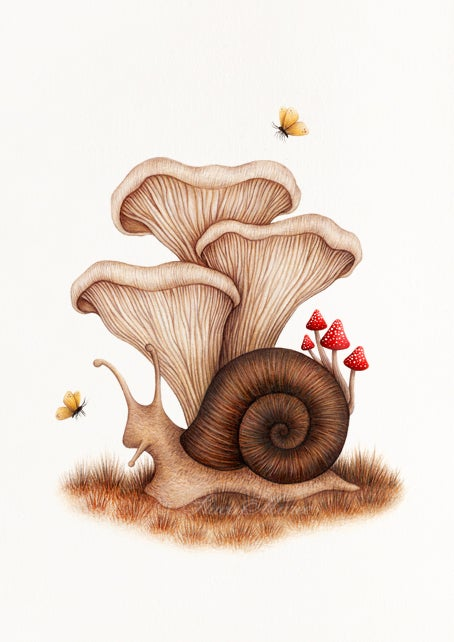 Image of Forest Floor - FINE ART GICLÉE PRINT