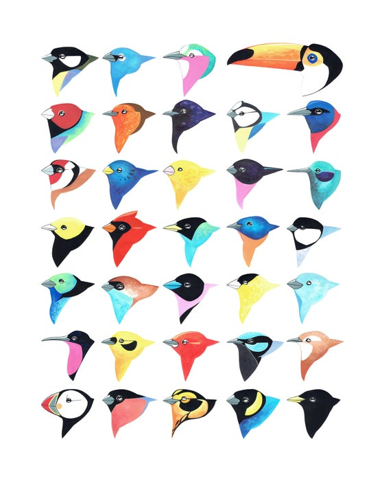 Image of Thirty-Five Birds