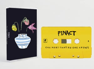 Image of 'The Part That No One Know' cassette