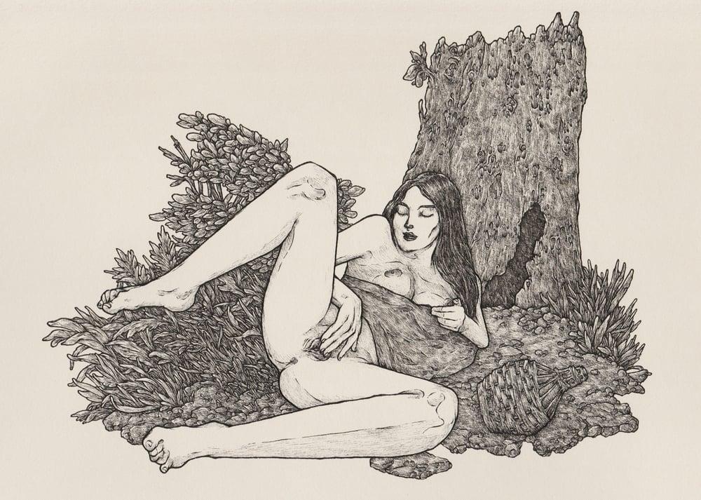 Image of In Vino Veritas