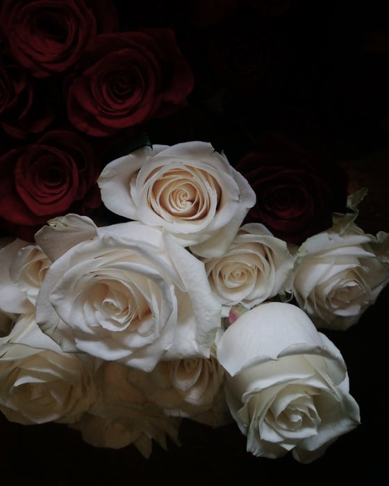 Image of Roses en Masse