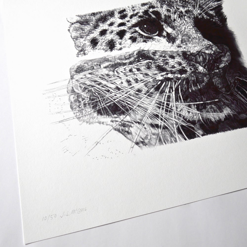 Image of OUR LOSS LIMITED EDITION PRINT