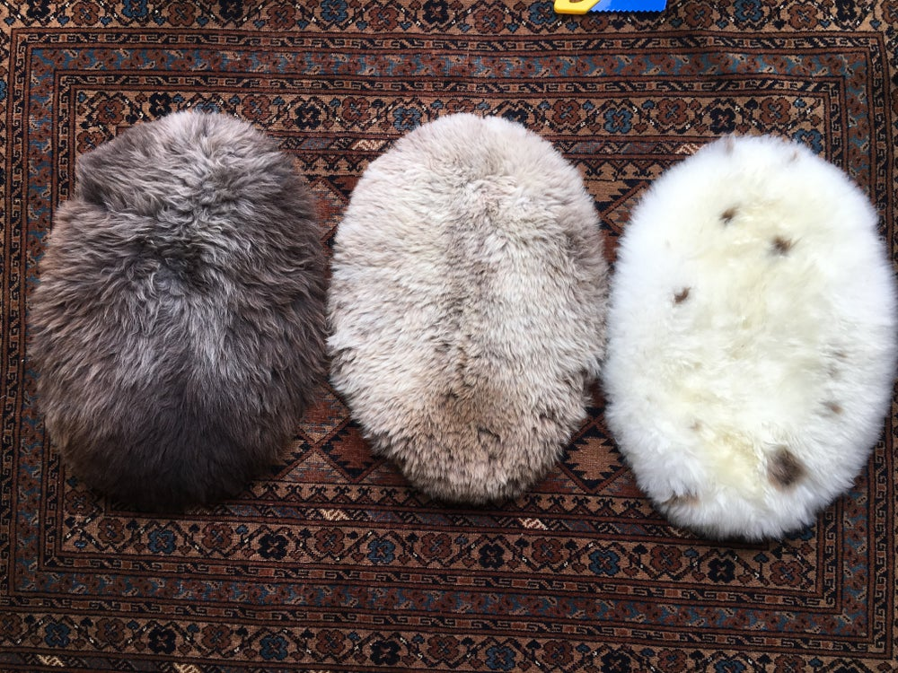 Image of W&W assorted rare breed seat pads or pet beds