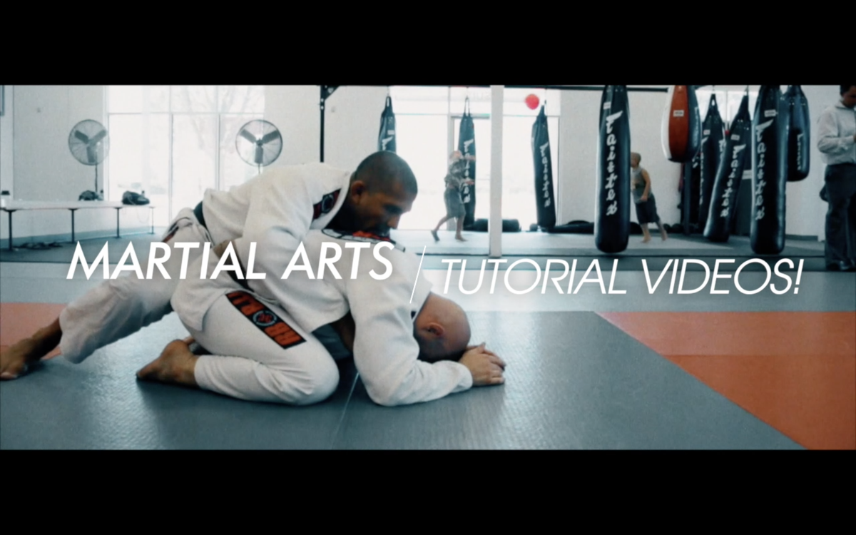 Image of Martial Arts Tutorial Video