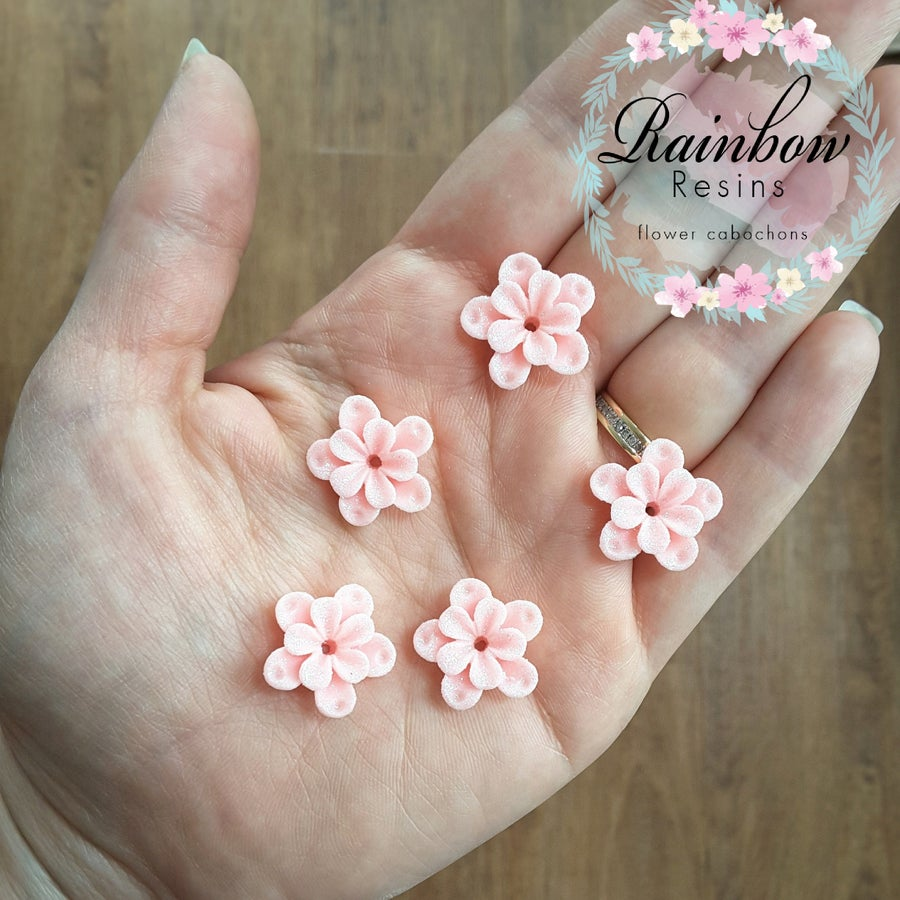 Image of Baby pink cherry blossoms x 10