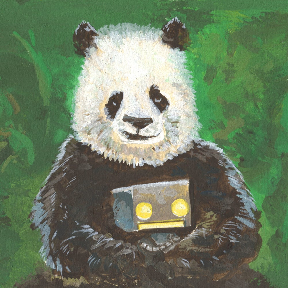 Image of Panda On Your Side
