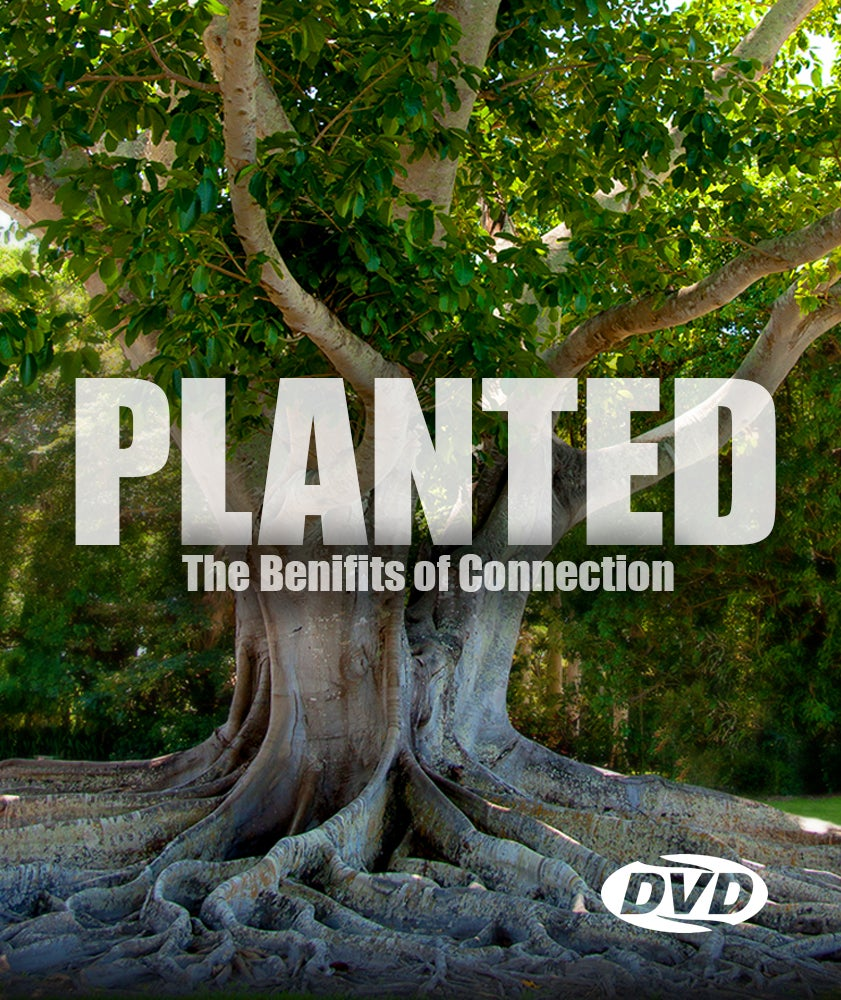 Image of Planted - DVD Series