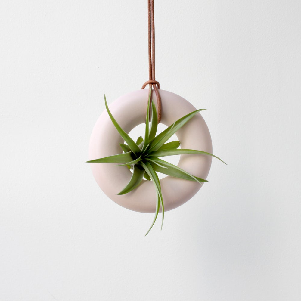 Image of PINK PORCELAIN AIR PLANTER
