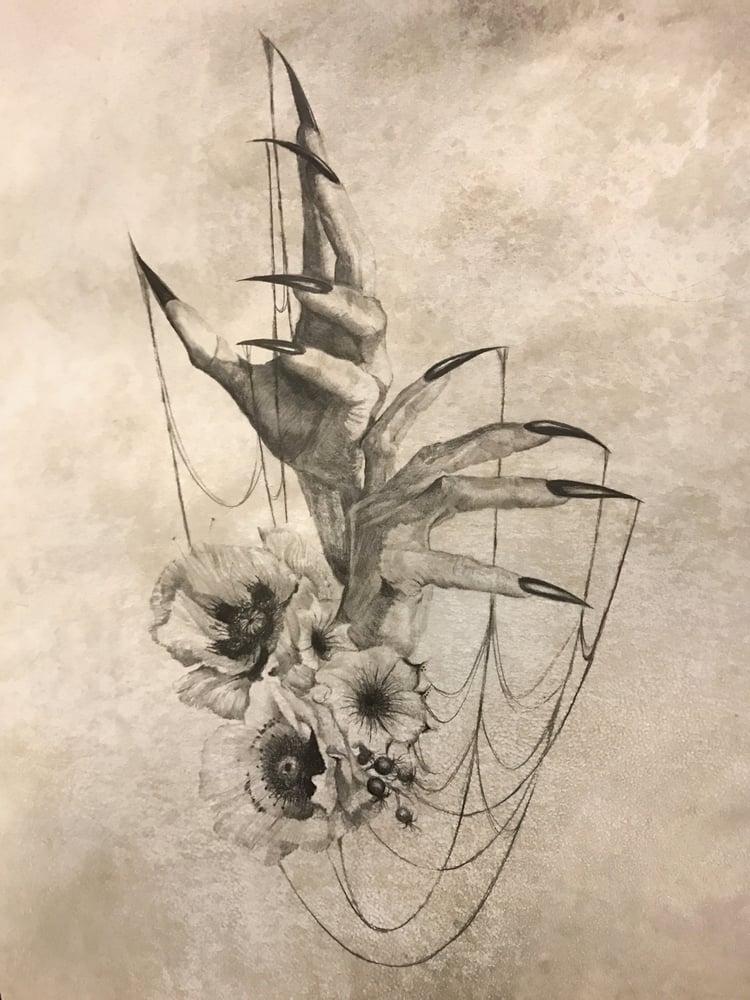 Image of Widow's hands
