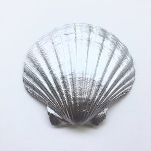 Image of Spirit Shell - Silver Tone
