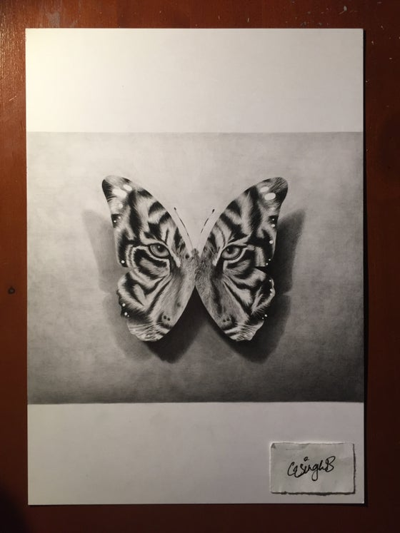 """Image of """"The Tiger Butterfly"""" (Print)"""