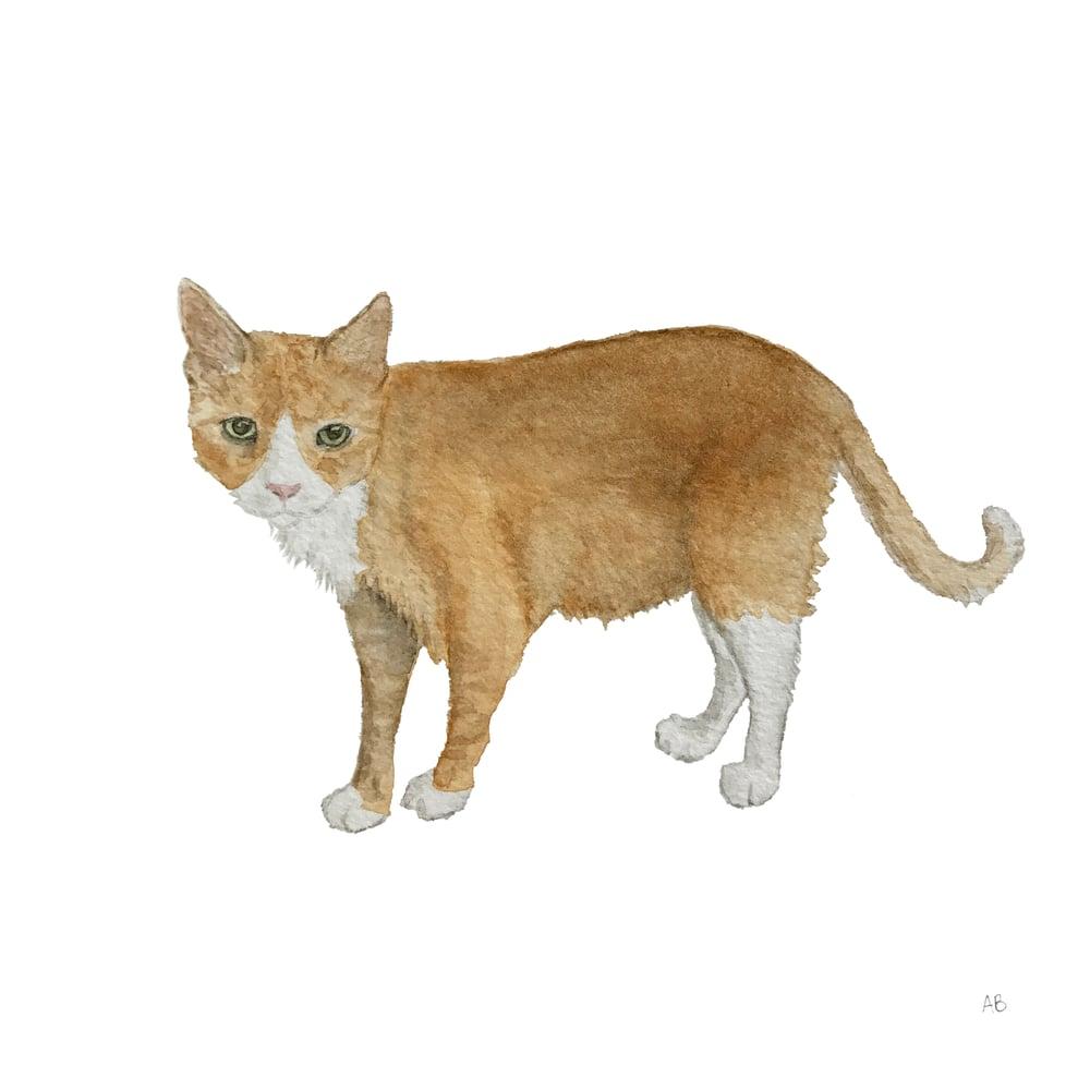Image of Original Custom Watercolor Painting : Pet