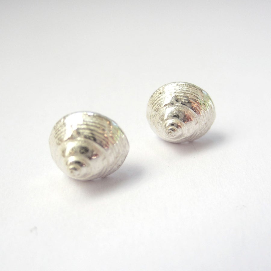 Image of silver shell earrings, winkle shell stud earrings