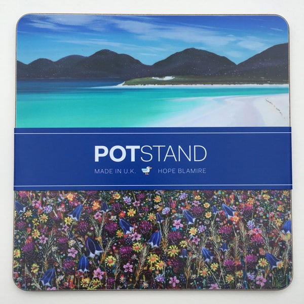 Image of Seilebost machair potstand