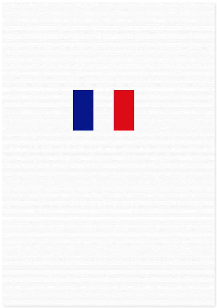 Image of french flag | special edition