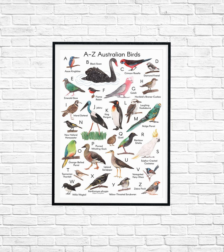 Image of A-Z Australian Birds