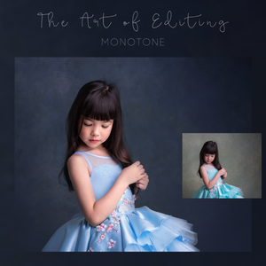 Image of The Art of Editing - Monotone