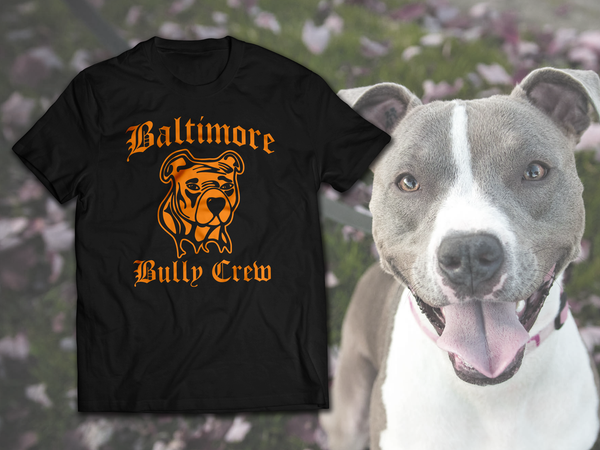 Image of Baltimore Bully Crew Orange on Black