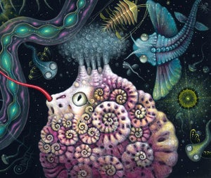 """Image of MICROVERSE V - 17 X 17""""  Signed  Edition"""