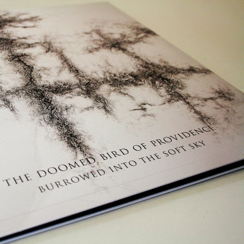 Image of The Doomed Bird of Providence - Burrowed Into The Soft Sky