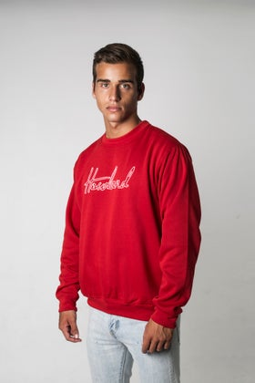 Image of HOWLAND RED SWEATER