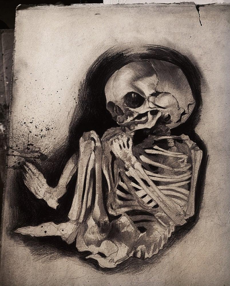 Image of 'FOETAL SKELETON' - Original Artwork - Graphite on Paper