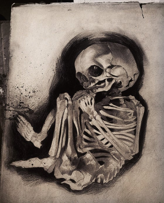 Image of 'FOETAL SKELETON' - Original Artwork - Graphite on Paper