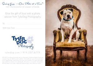 Image of Extra Treats Pet Photography Gift Certificate