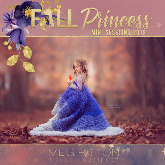 Image of Fall Princess Mini Sessions 2018