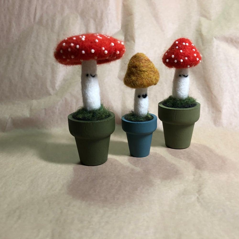 Image of mushroom friends // medium