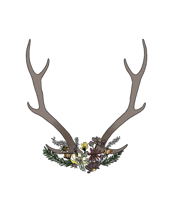 Image of Antlers & Flowers Stickers
