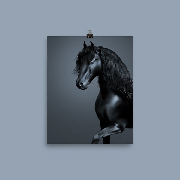 Image of Black Stallion