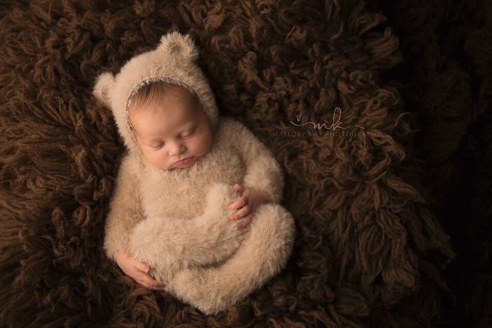 Image of Beary Furry Cubby
