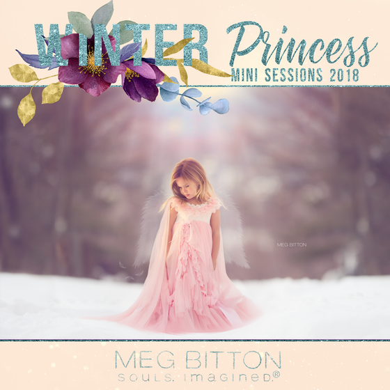 Image of Winter Princess Mini Sessions 2018