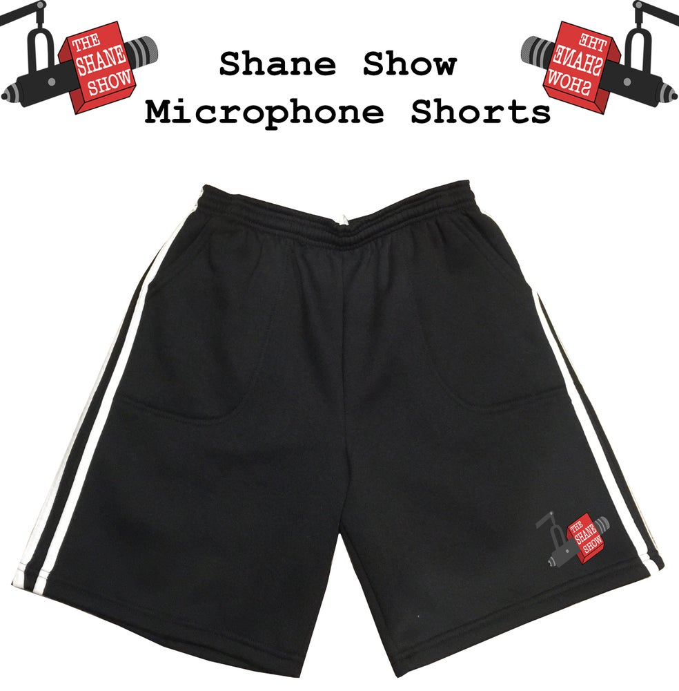 Image of Embroidered Microphone Shorts