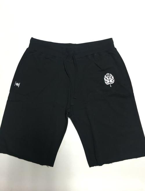 Image of CLASSIC LEAF - Shorts