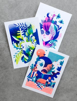 Image of Pack 3 cartes fluos
