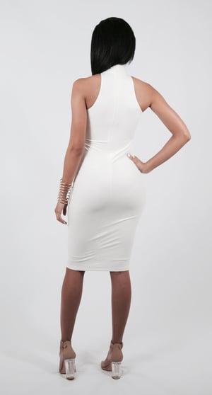 Image of Kardash Turtleneck Dress