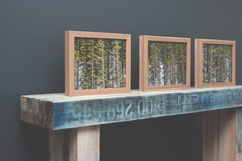 Image of Designer range framed prints (Natural Timber)