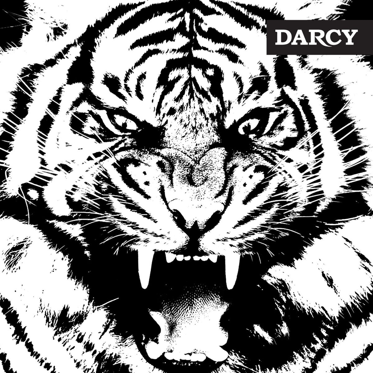 "Image of ""Tigre"" premier album (Verycords/Warner)"