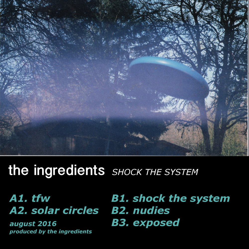 Image of THE INGREDIENTS - SHOCK THE SYSTEM