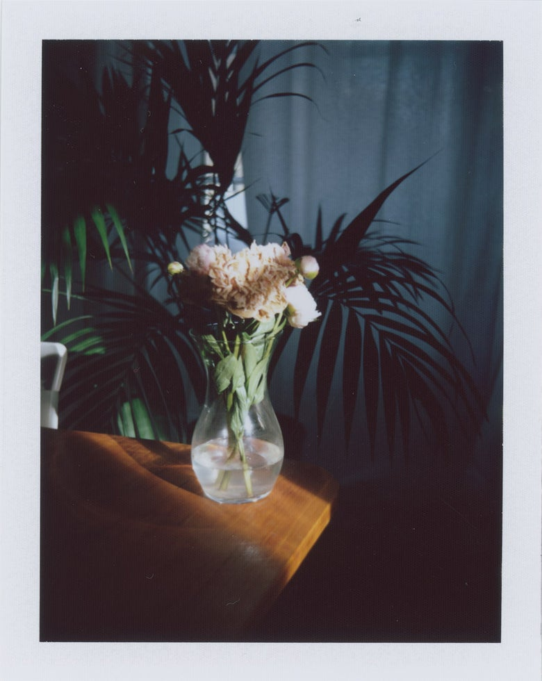 "Image of Polaroid ""Dead flowers"""