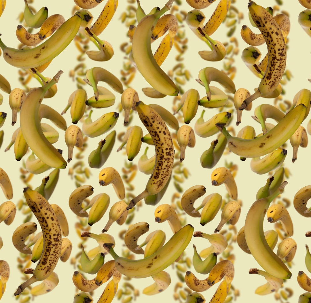 Image of Spinning Banana Shower Curtain