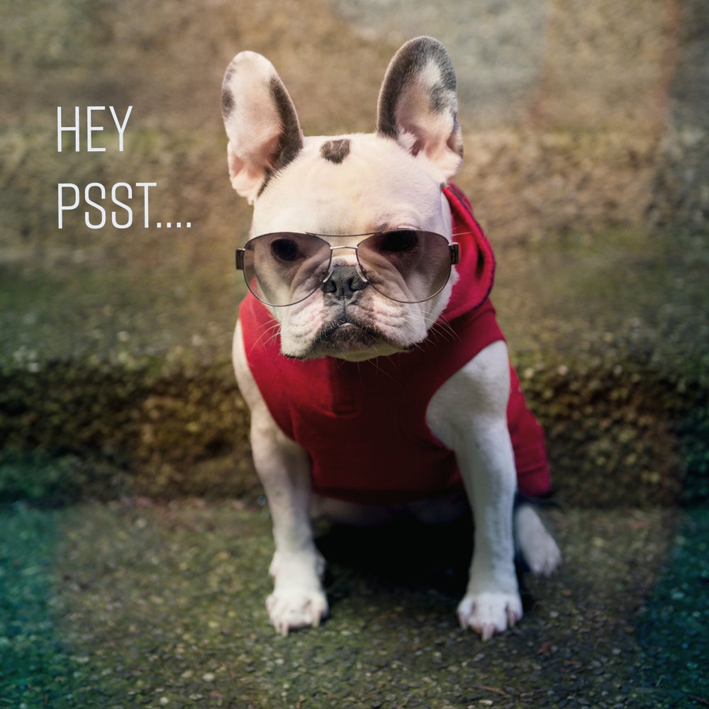 Image of French Bulldog Birthday Thug