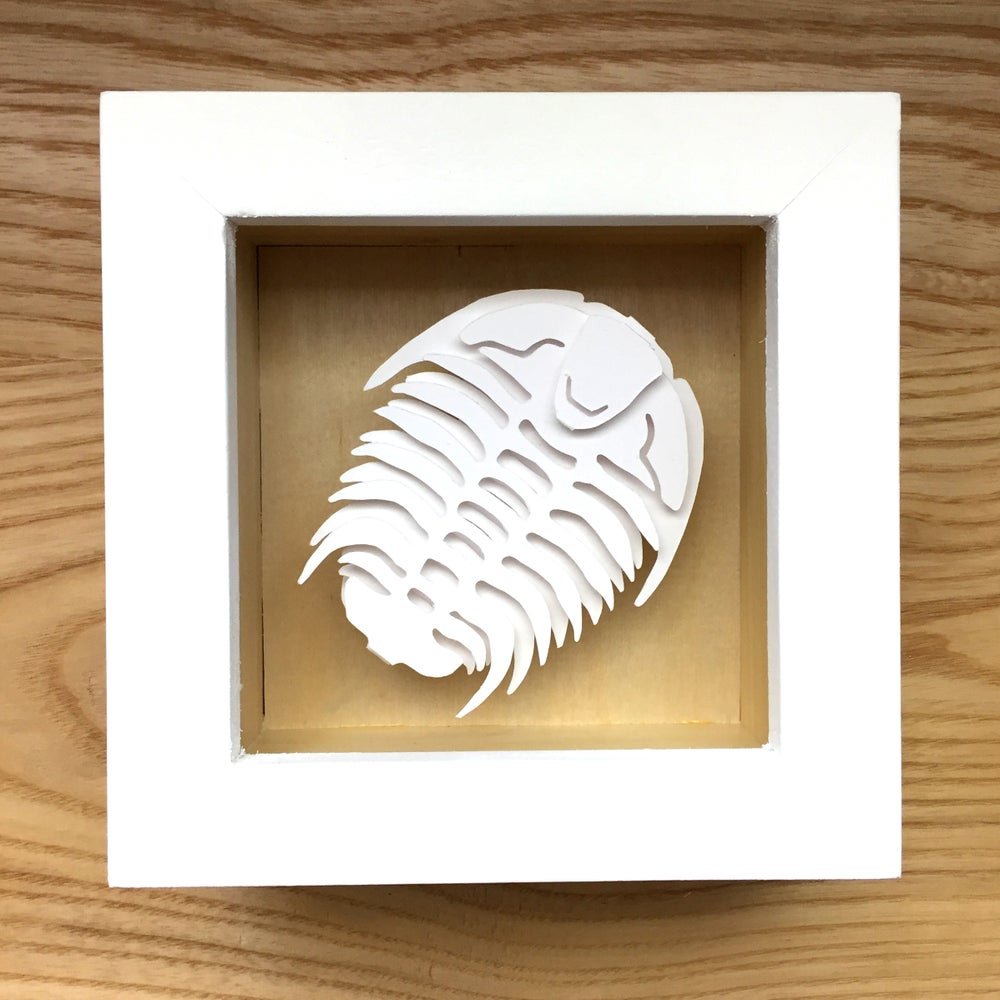 White Trilobite Paper Sculpture