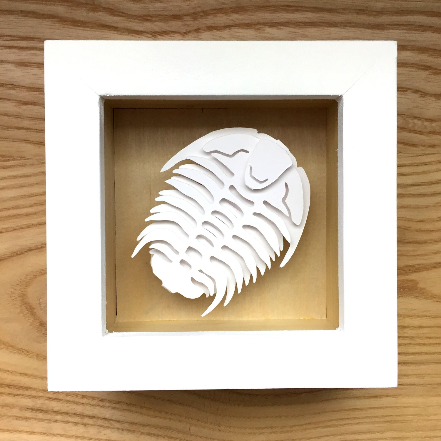 Image of White Trilobite Paper Sculpture