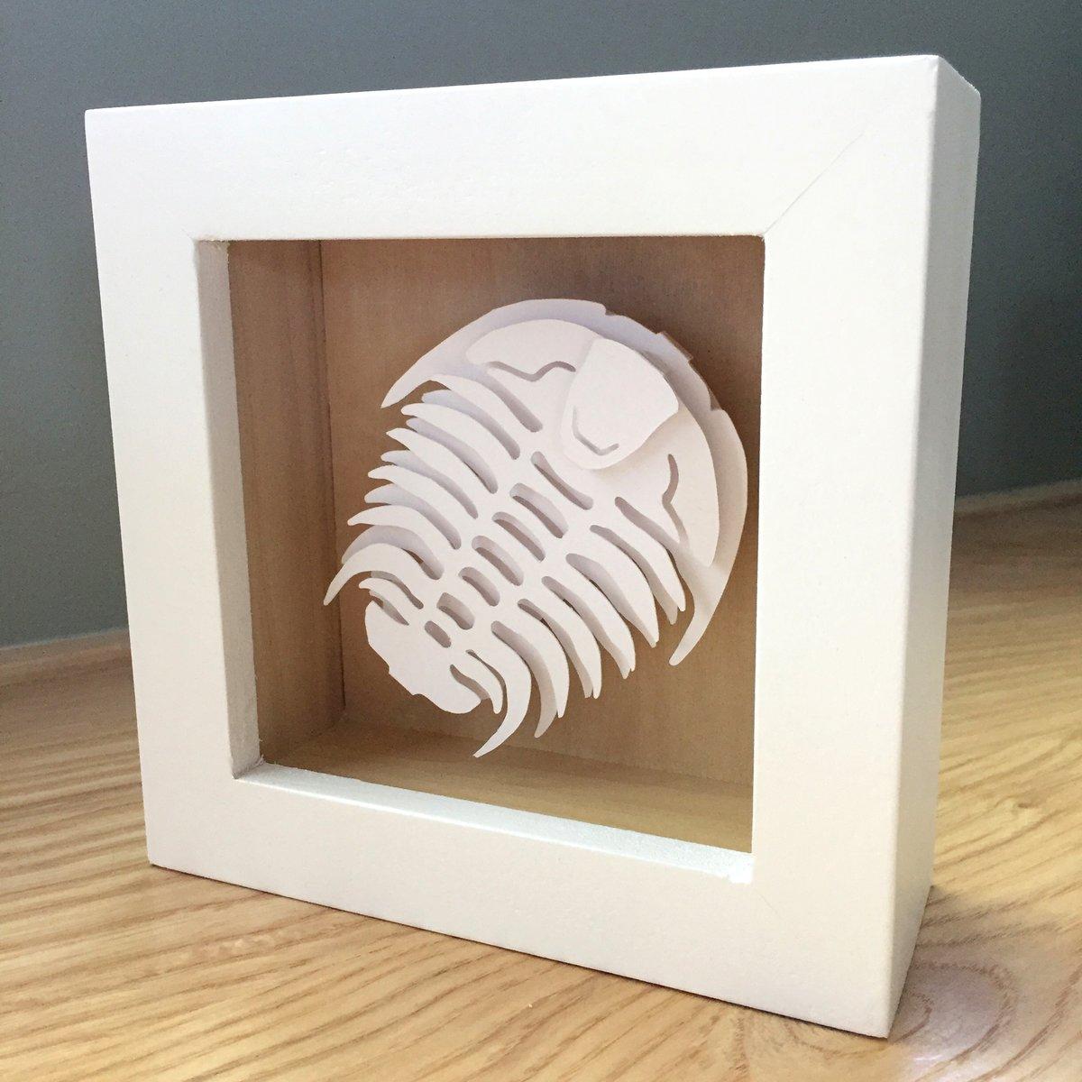 Image of White Trilobite Paper Sculpture