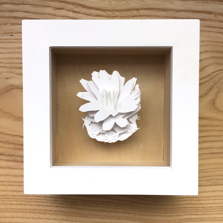 Image of White Pediocactus despainii Paper Sculpture