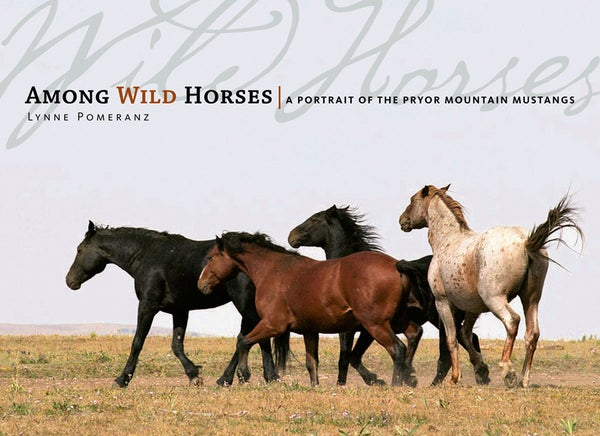 Image of Among Wild Horses: A Portrait of The Pryor Mustangs