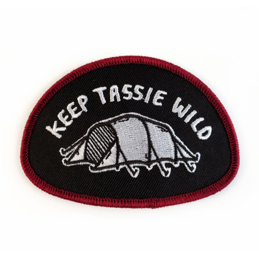 Image of Tent Patch